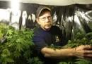 I veterani potranno fare uso di marijuana