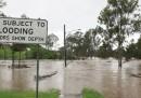 Otto morti nelle alluvioni del Queensland