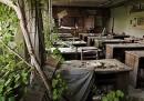 La vita a Chernobyl