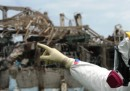 Che ne è di Fukushima