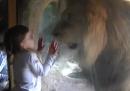 Sofia e il leone che vorrebbe molto mangiarla
