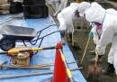 La bonifica intorno a Fukushima