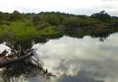L'Amazzonia su Street View