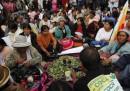 Morales e la questione della coca