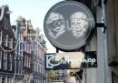 In Olanda i coffee shop saranno vietati agli stranieri