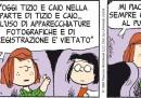 Peanuts 2012 maggio 21