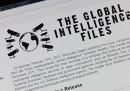 Anonymous molla Wikileaks