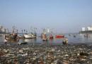 I pescatori di Mumbai