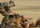 L'esercitazione militare in India