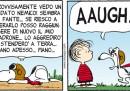 Peanuts 2013 febbraio 22