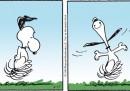 Peanuts 2013 aprile 17