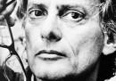 I ritratti di Richard Avedon