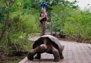 Google Street View alle Galapagos