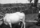 Vecchie foto del Giro d'Italia