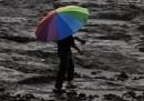 India, alluvioni nel nord per piogge monsoniche: 23 morti, 50 dispersi