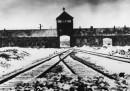 La campagna per trovare i nazisti ancora nascosti