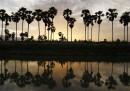 Krang Tnung, Cambogia