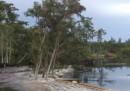 La voragine d'acqua in Louisiana – video