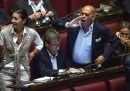 Camera dei Deputati - ddl costituzionale