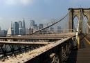 Usa, spari in strada a Brooklyn: Ucciso bambino di un anno