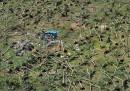 Il disastro delle Filippine in 30 foto