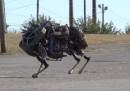 Google compra robot