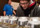 L'indotto della marijuana in Colorado