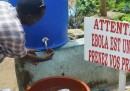 L'epidemia di ebola potrebbe durare a lungo