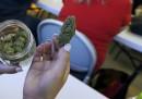 Gli stereotipi su chi fuma la marijuana