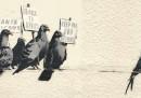 Il murale di Banksy scambiato per un disegno razzista