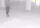 Il video girato dalle telecamere del Museo del Bardo durante l'attentato