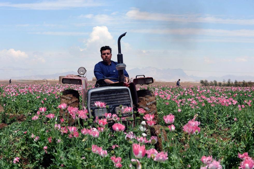 Maiwand, Afghanistan