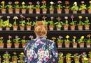 Le foto del Chelsea Flower Show