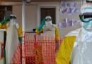 Buone notizie sull'epidemia di ebola