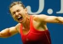 Le semifinali degli US Open 2015, cosa seguire