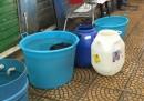 A Messina manca l'acqua da una settimana