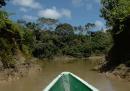 La strada in Amazzonia che non dovrebbe esistere