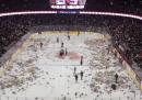28.815 orsacchiotti lanciati su un campo da hockey