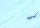 Il video della caduta della sciatrice Nadia Fanchini