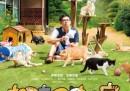 1. C'è un videogioco giapponese per collezionare gatti 2. Ci hanno fatto un film