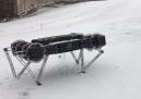 Finalmente un robot puccioso che forse avrà pietà di noi