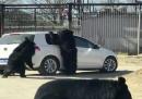 Meglio non dare da mangiare agli orsi allo zoo