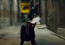 Il nuovo video di Kendrick Lamar e Rihanna