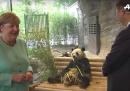 """La """"diplomazia del panda"""" ha colpito ancora"""