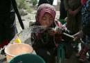 In Yemen è arrivato il colera