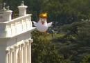 C'è un gigantesco pollo che assomiglia a Trump dietro alla Casa Bianca