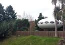 Potete acquistare una casa a forma di disco volante in Nuova Zelanda