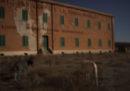 Foto mosse dall'Asinara