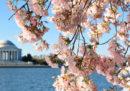 Cos'è l'equinozio di primavera, e perché è stato il 20 marzo e non il 21
