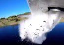 Nello Utah volano pesci (ok, precipitano)